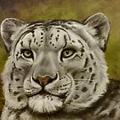 Snow Leopard by Ine Spee