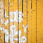 Peeling Gold by Barbara Ingersoll