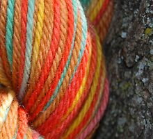 Autumn Colored Yarn by jesslla