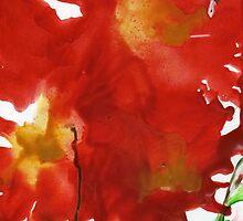 Flaming Iris by Catherine Price