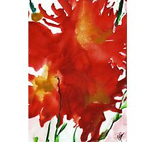 Flaming Iris Photographic Print