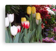 Flowers - Flores Canvas Print