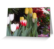 Flowers - Flores Greeting Card