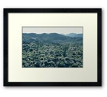 Desert in Spring #2, Anza-Borrego Desert Framed Print