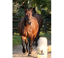 Pam - NNEP Ottawa ON Photographic Print