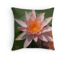 Beautiful Peach Waterlily Vector Throw Pillow