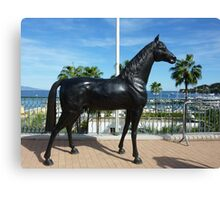 Shergar Is Alive And Well And Living In Cap Ferrat Canvas Print