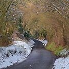 Frensham Lane In Winter. by relayer51