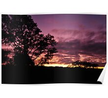December Sunset Purple Hue  Poster