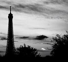 Vintage Effiel Tower by Ray King