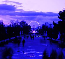 La Roue de Paris by Ray King