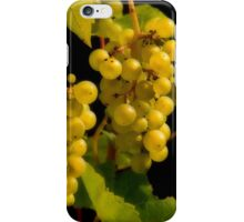 Autumn's harvest iPhone Case/Skin