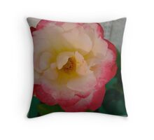 Pink and Cream Delight Rose Throw Pillow