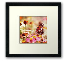 Textured Butterfly Framed Print
