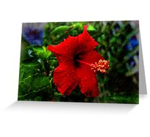 Red Hibiscus 1 Greeting Card