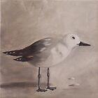 """Seagull 2   """"SOLD"""" by Debbie Hetzel/Piro"""