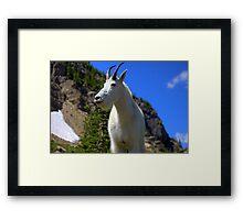 Glacier Icon Framed Print