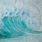 Aqua by Sarina Tomchin