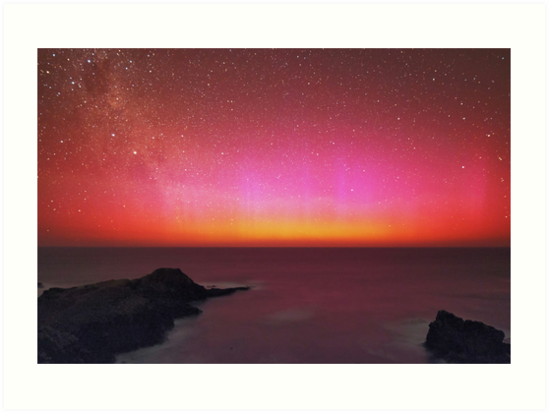 Red And Pink  by Alex Cherney
