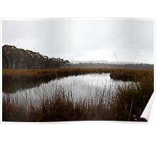 Wetlands                 West Coast, Tasmania Poster
