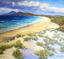 Cape Hawke - Forster by Hugh Cross