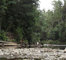 looking up to the 3rd lot of rapids by gaylene