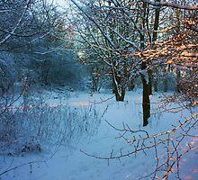 Winter Wonderland by Mounty