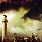 Lifes a Storm by James McKenzie