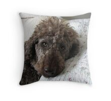 ...oh sweetie-pie........ Throw Pillow