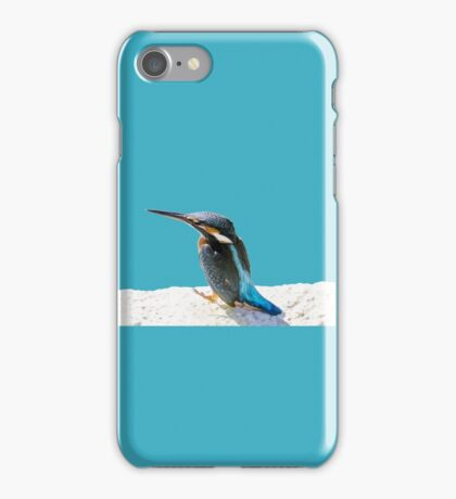 A Beautiful Kingfisher Bird Vector iPhone Case/Skin