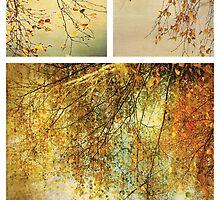 Autumn by Anne Staub