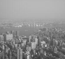 New York New York! by Charlie Palmer