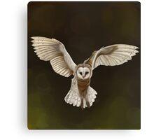 Stunning Hand Drawn Barn Owl Canvas Print