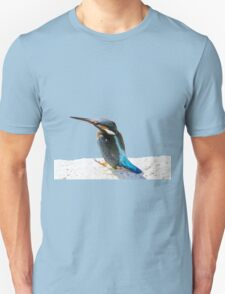 A Beautiful Kingfisher Bird Vector T-Shirt