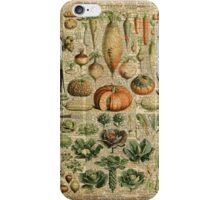 Autumn Fall Vegetables Vegetarian Vegan Thanksgiving Dictionary Organic Art Vintage Cottage Chic iPhone Case/Skin