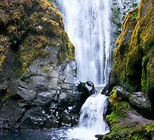 Susan Creek Falls by Geoff Puryear