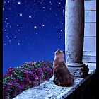 Cats and the Constellations Calendar 2012 by Kathleen Horner