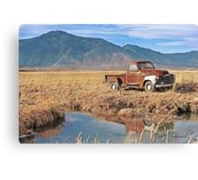 Rustic Desert Canvas Print