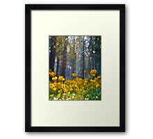 Distorted Dreams By Time Framed Print