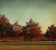 Autumn In the Park by Lisa Holmgreen