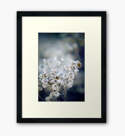 Frozen Flowers Framed Print