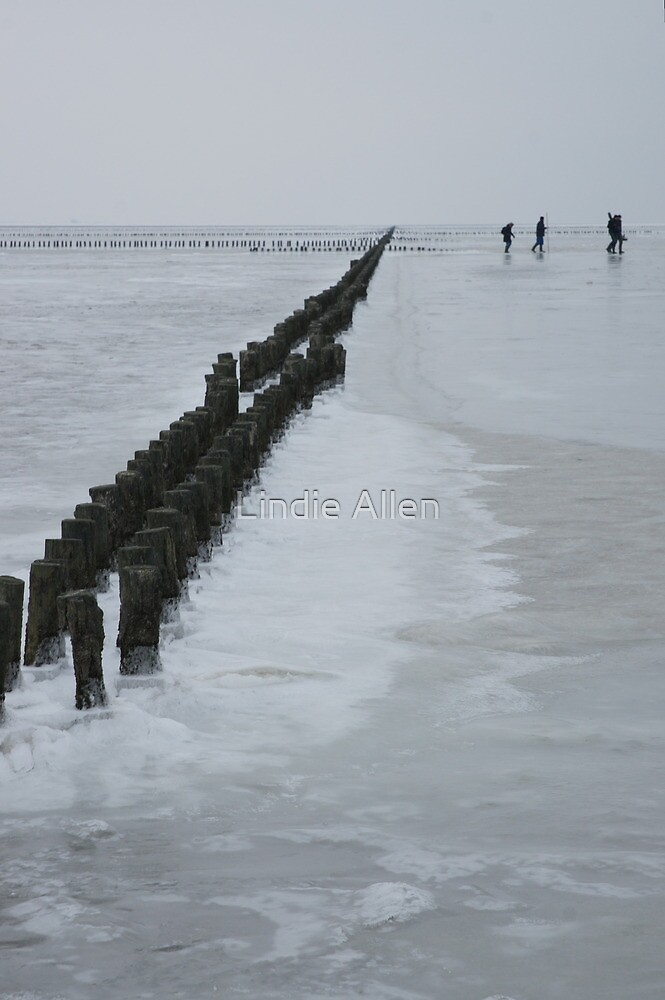 Frozen Wadden Sea by Lindie Allen