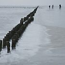 Frozen Wadden Sea by Lindie