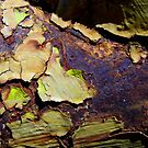 Hydrant Close-up by WildestArt