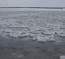Icy Wadden Sea by Lindie Allen