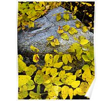 Granite Leaves Poster
