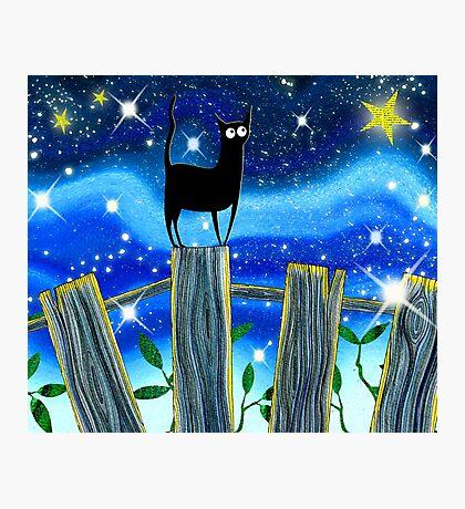 Paper Stars (calendar image) Photographic Print