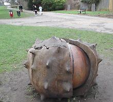 Fallen Conker/Wooden Sculpture -(280112)- Digital photo by paulramnora