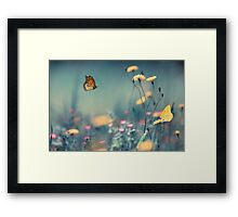 Dreamin Summer  Framed Print
