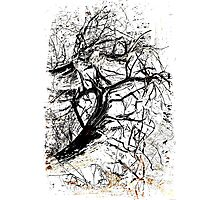Art Tree Photographic Print